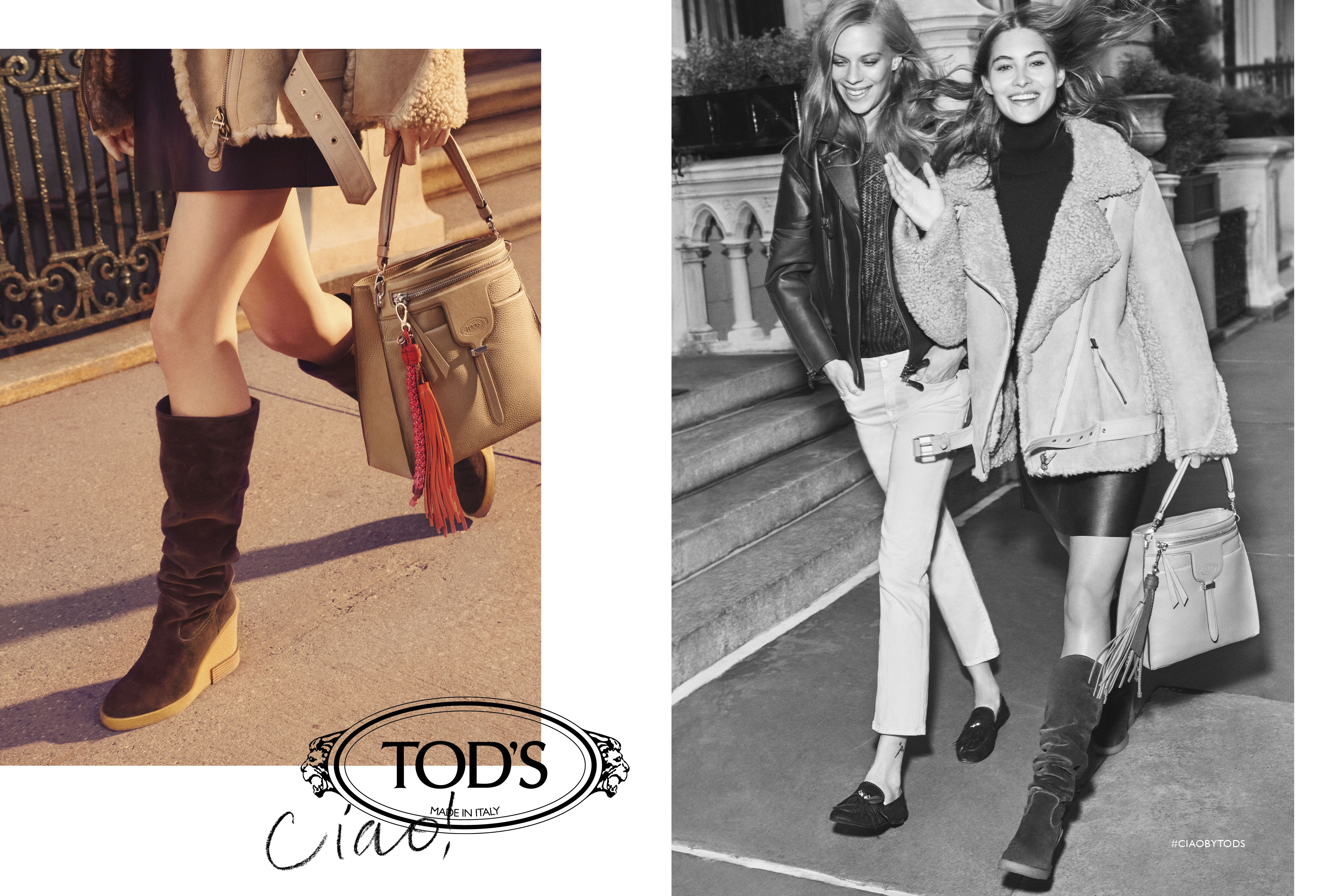 tods 3