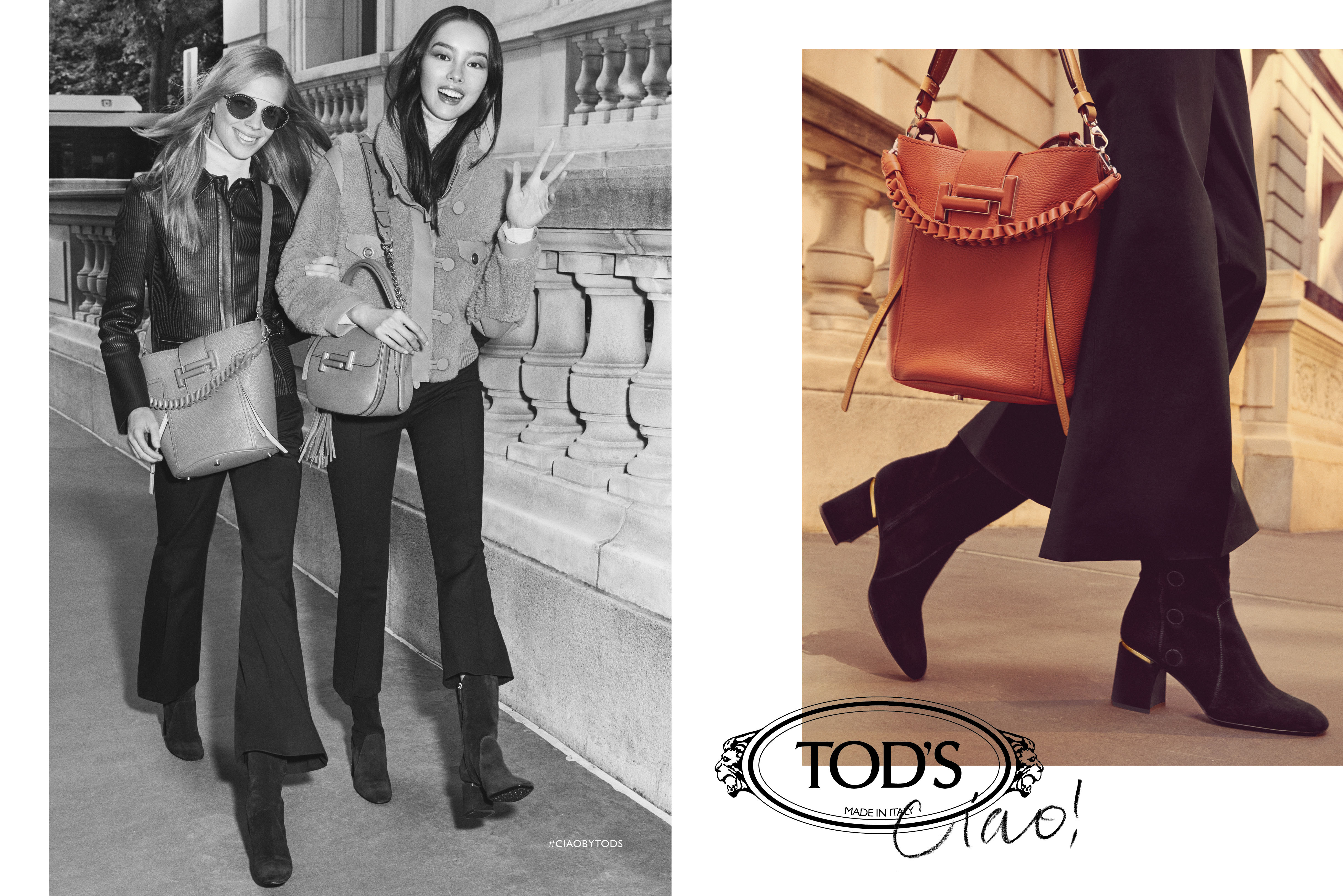 tods 2